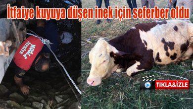 Photo of İtfaiye kuyuya düşen inek için seferber oldu