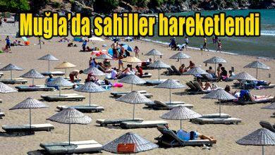Photo of Muğla'da sahiller hareketlendi