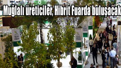 Photo of Muğlalı üreticiler, Hibrit Fuarda buluşacak