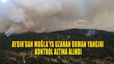 Photo of Aydın'da başlayarak Muğla'ya ulaşan orman yangını kontrol altına alındı