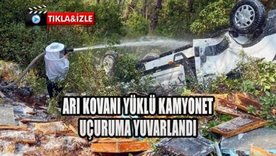 Photo of ARI KOVANI YÜKLÜ KAMYONET UÇURUMA YUVARLANDI