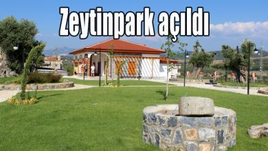 Photo of Zeytinpark açıldı