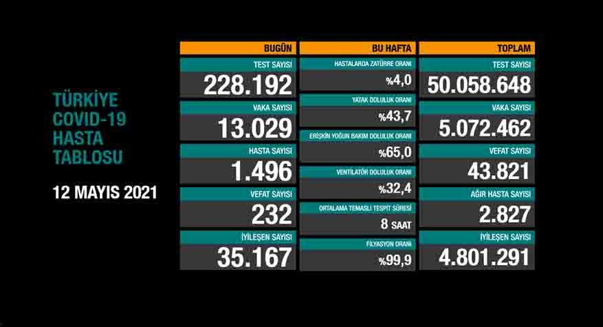Türkiye'de son 24 saatte 13.029 koronavirüs vakası tespit edildi