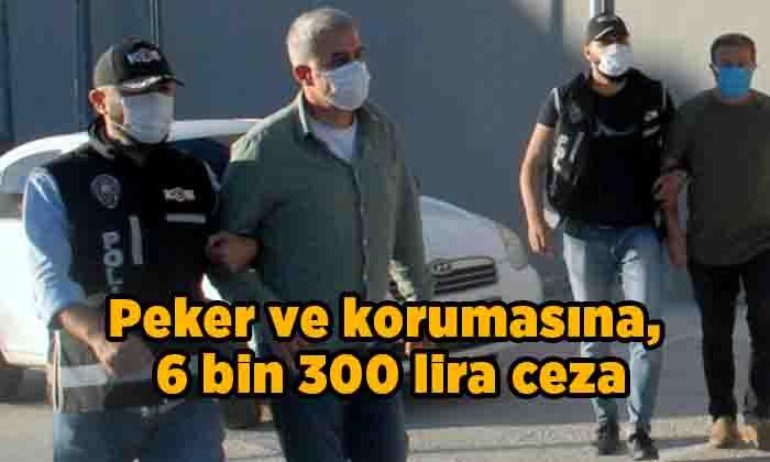 Peker ve korumasına, 6 bin 300 lira ceza