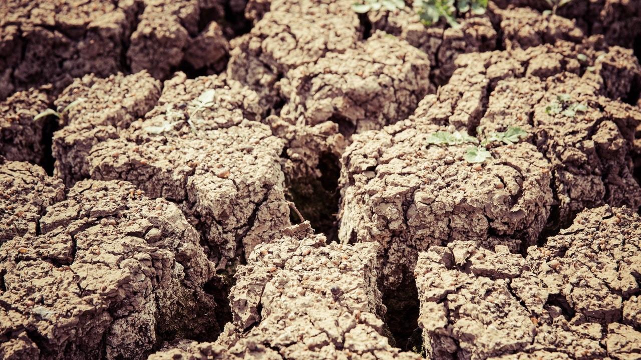 Güneydoğu'da kuraklık alarmı