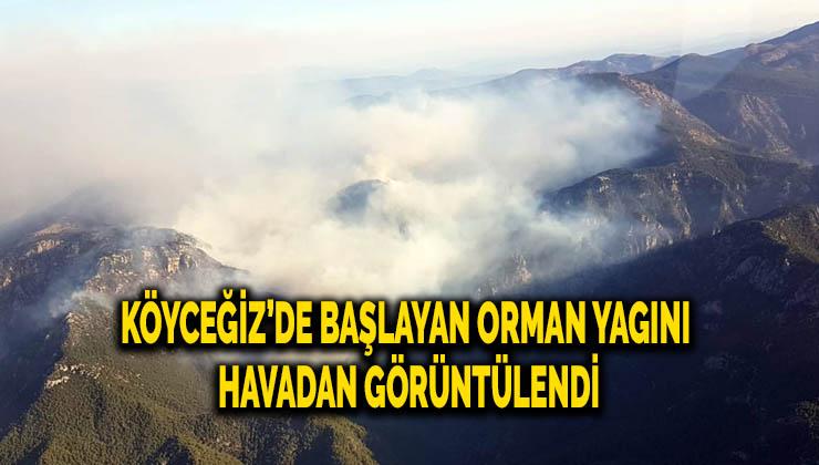 Köyceğiz'de başlayan orman yangını havadan görüntülendi