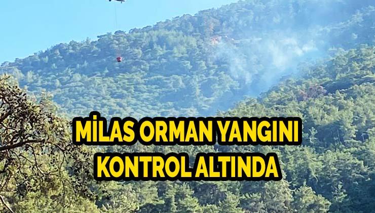 Milas orman yangını kontrol altında