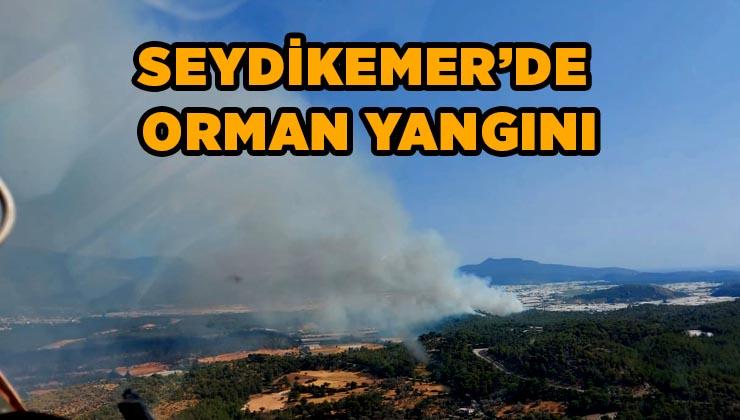 Seydikemer Karaköy'de Orman yangını