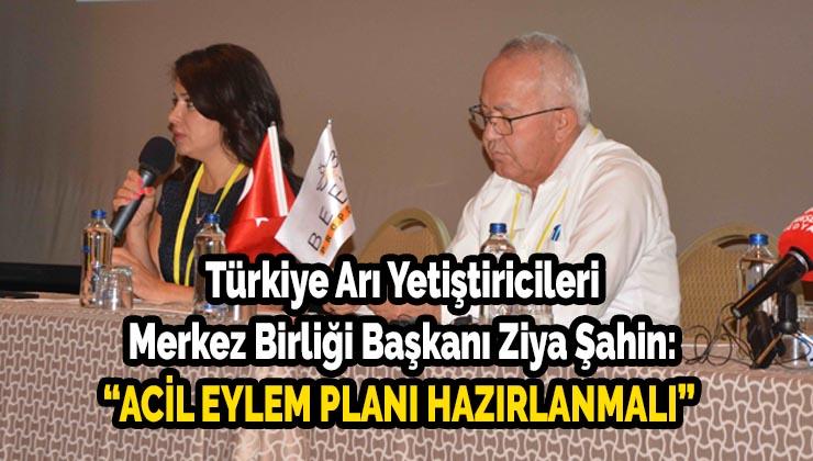 """Türkiye Arı Yetiştiricileri Merkez Birliği Başkanı Ziya Şahin: """"Acil eylem planı hazırlanmalı"""""""