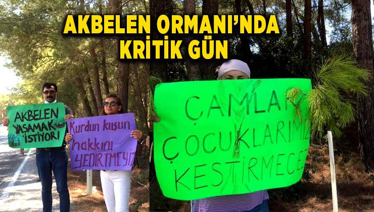 """AKBELEN ORMANI'NDA KRİTİK GÜN: """"ÇAMLAR ÇOCUKLARIMIZ KESTİRMECEZ"""""""